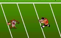 Taz Football
