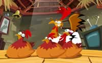 Hen Coops