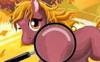 Horses Hidden Numbers