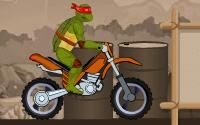 Ninja Turtles Stunts