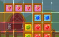 Farmblocks 10x10