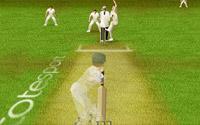 Cricket spellen